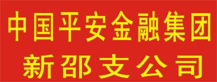 中国平安综合金融集团新邵支公司-洞口招聘