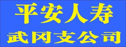 平安人寿武冈支公司-洞口招聘